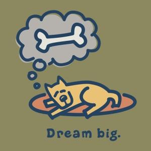 22839_dreambig